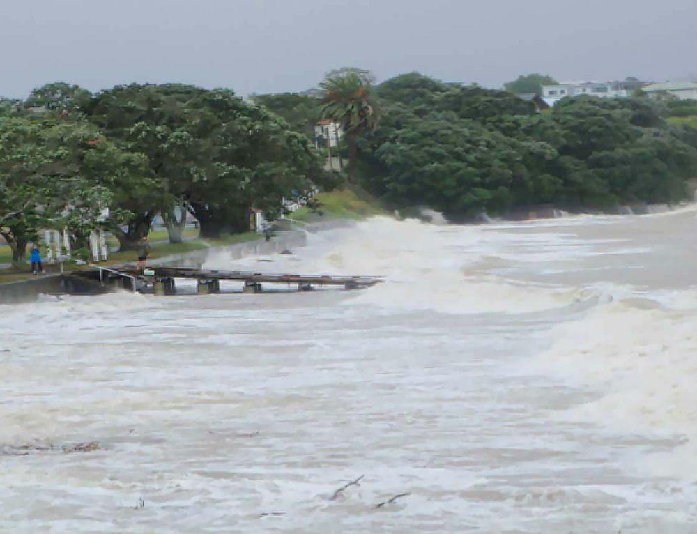 Narrowneck Beach, Auckland